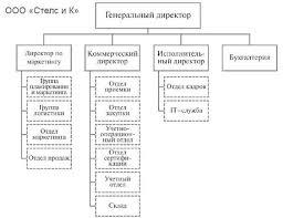 Отчет по квалификационной преддипломной практике Организационная структура предприятия