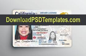 driver Cards Card Id Credit Best Loyalty License Mockups