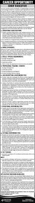 chief executive job international airlines pia job