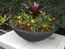 large outdoor planter bowl black scoria lava stone finish planted with spectacular bromeliads
