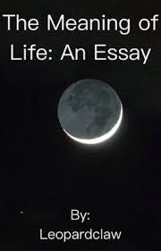 the meaning of life an essay leopardclaw wattpad the meaning of life an essay
