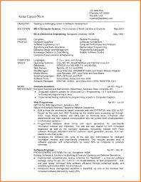 Mining Resume Example Resume Peppapp