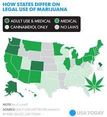 should medical marijuanas be legalized in all 50 states