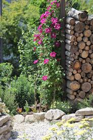Domis Garten Frühsommer Garten Nach Regendusche