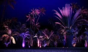 nightgarden transforms miami botanical space