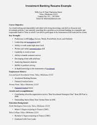 Sales Lady Job Description Resume Example Of Resume Objectives For Sales Lady Resume Template 69