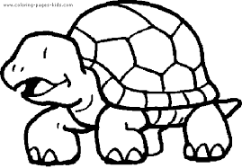 Small Picture Turtle Coloring Pages Bestofcoloringcom