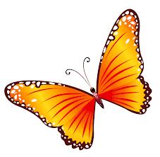 orange clipart png. transparent orange butterfly png clipart png