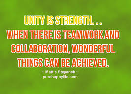 Quotes About Unity Unique 48 Best Quotes And Sayings About Unity