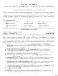 Hr Director Resume Examples Therpgmovie
