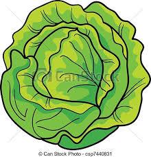 lettuce clipart. Interesting Lettuce Lettuce Clipart 1 And I