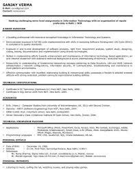 International Biodata Format It Resume Sample Healthcare It Resume