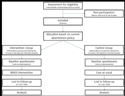 Flow Chart Of The Mass Study Download Scientific Diagram