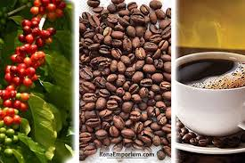 112m consumers helped this year. Buy 100 Pure Kona Hawaiian Coffee Online At Discount Rates