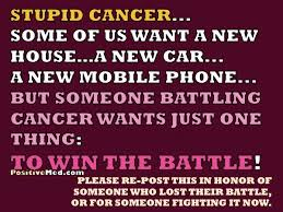 I Hate Cancer Quotes Delectable Losing The Battle With Cancer Quotes Hover Me
