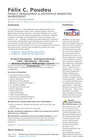 Senior Marketing & Business Development Executive Resume samples