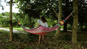 How To Hang A Hammock Between Two Trees - YouTube