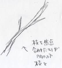控え目に咲く花梅の花 簡単な描き方 イラストの描き方ねっと
