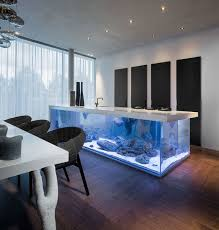 and then we have the stone kitchen countertop that doubles as an aquarium roof we re not going to give you the cons here you surely can figure those out