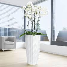 modern office plants. The 25+ Best Tall Indoor Plants Ideas On Pinterest | Lounge . Modern Office A
