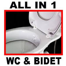 WC Bidet Toilet Combined self cleaning soft close seat