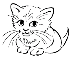 Small Picture Baby Animal Coloring Pages Coloring Pages