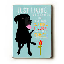 just living is not enough one must have sunshine freedom and a