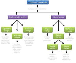 yanelkis rodriguez classification graphic organizer jpg