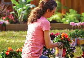 how to plant a flower garden. Choose Your Plants - How To Plant Flowers A Flower Garden