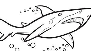 Small Picture Cute Shark Coloring PagesSharkPrintable Coloring Pages Free Download