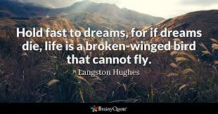 Broken Dreams Quotes Best of Hold Fast To Dreams For If Dreams Die Life Is A Brokenwinged Bird
