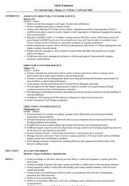 Director Customer Service Resume Samples Velvet Jobs