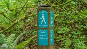 Image result for red town coal creek loop trail/bellevue