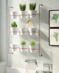 wall mounted planter living in a shoebox
