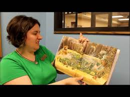 king bidgood s in the bathtub by audrey don wood read along with me by miss michelle mpl