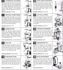 Gold Gym Workout Chart 69 Bright Weider Pro Exercise Chart