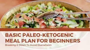 Basic Paleo Ketogenic Meal Plan For Beginners