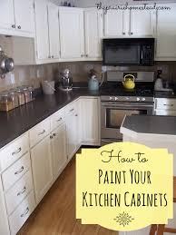 Professional Painting Kitchen Cabinets Beauteous How To Paint Your Kitchen Cabinets The Prairie Homestead
