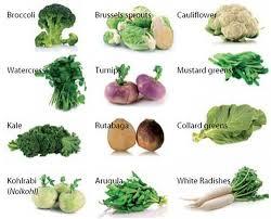 ДИЕТА БОГАТАЯ СУЛЬФОРАФАНОМ ИЗ КРЕСТОЦВЕТНЫХ ОВОЩЕЙ МОЖЕТ  крестоцветные овощи