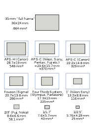 sizes of the sensors used in most cur digital cameras relative to a standard 35mm frame