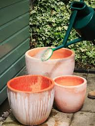 Soak Terra Cotta Pots with Water Before Planting