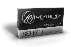 300 Weatherby Magnum