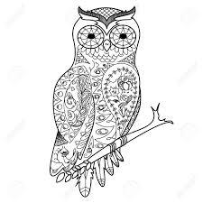 フクロウ鳥大人イラストの塗り絵大人のための着色抗ストレスzentangle スタイル黒と白のラインレース