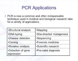 The Polymerase Chain Reaction Pcr Ppt Video Online Download