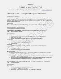 Operations Manager Resume Objective Examples New Used Cares Of