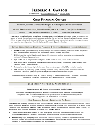 Resume Writer For Cfos Executive Resume Service For Finance