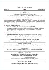 Best Executive Resume Format Resume Example