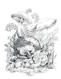 Relaxing Coloring Pages An Adult Coloring Page Featuring Flowers And
