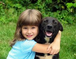 animal hospital emergency veterinarian nj animal wellness and preventive medicine