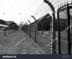 barbed wire fence concentration camp. Barbed Wire Fence, At Concentration Camp Of Auschwitz,Poland. Fence O